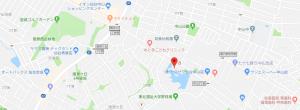 中山グリーンハイツC棟101号室地図